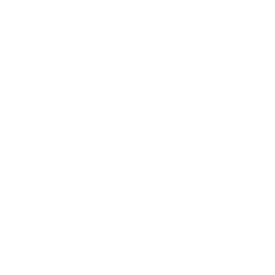 Bmw, opens in a new window