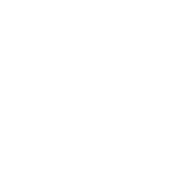 Make A Wish Foundation, opens in a new window